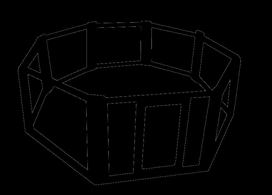 Octagon Cage